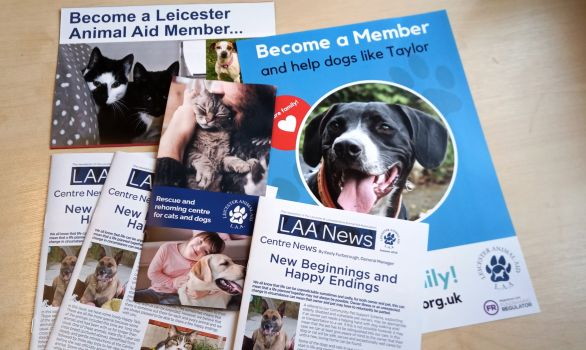 Become an LAA Member and part of our family