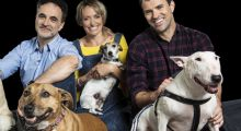 Animal Rescue Live: Supervet Special feature image
