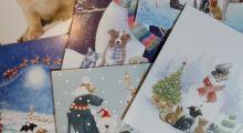 Get your paws on our charity Christmas cards! feature image