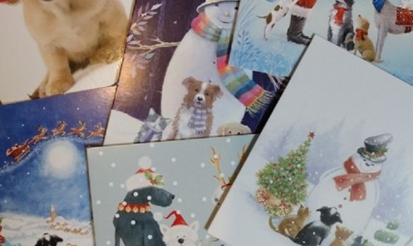Charity Christmas cards now available
